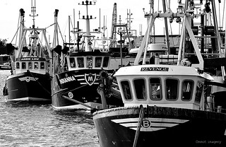 Five day black and white challenge, day 5, 'When the boat comes in'