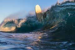 RR__0242 (WaveRder) Tags: california water surf waves barrel surfing h2o socal southerncalifornia liquid bodyboarding toob waveporn waterhousing canonusa canoneos7dmarkii canon7dmarkii canon7dmark2 aquatechimagingsolutions aqautech