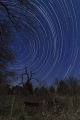 Let's get tanked (erickanderson) Tags: longexposure tree star long exposure trails startrails