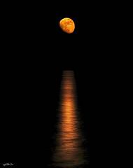 Catalina sobre el mar camino del horizonte a las 05:49, en Rota... (Lola Cortés Neva) Tags: lola neva cortés lolacortésneva catalinasobreelmarcaminodelhorizontealas0549 enrotamoonlunanochemarnaranjalolacortésnevalolacortésnevacádizandalucíaplayacielo