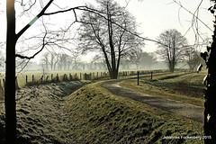 Radweg (grafenhans) Tags: winter nebel sony natur alpha 700 tamron sonnenaufgang weg a700 alpha700 grafenwald 281750 weidelandschaft