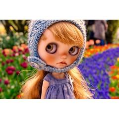 #tulips #Buganville #blythecustom #blythe #fab_toys #dollstagram #dollphotography #toyplanet #Cooper #customblythe #blythelove #dollylove