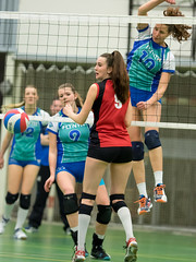 O3144520 (roel.ubels) Tags: sport flamingos volleyball 56 volleybal vrouwen vvc 2015 vught topsport topklasse vvcvught