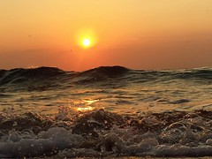 Morning wave. (Andy Royston / Ft Lauderdale Sun) Tags: photostream iphone6backcamera415mmf22