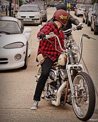 The Trip Out.. (Harleynik Rides Again.) Tags: chopper hd springer sportster attitudecustoms harleynikridesagain