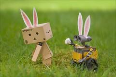 Lost your tail! (K a r 3 n) Tags: bunny easter sony disney pixar figurine kaiyodo walle yotsuba danbo canonfd50mmf35macro revoltech a6000 danboard ilce6000