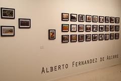 ALBERTO FERNANDEZ DE AGIRRE  (13)