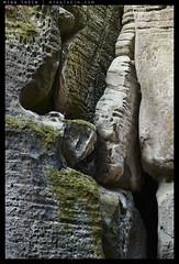 _8B19359 copy (mingthein) Tags: heritage rock zeiss forest t nikon sandstone rocks republic czech availablelight apo unesco formation carl limestone ming cesky raj skala planar otus 1485 onn 8514 hruba d810 thein zf2 photohorologer mingtheincom mingtheingallery