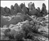 Joshua Tree - White Tank (Summicron20/20) Tags: camera field gold inch os dot 12 rodinal ulf ilford fp4 v10 125 joshuatreenationalpark deardorff goerz 10x12 dagor f68
