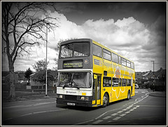 Trying to brighten up the day (Jason 87030) Tags: road black bus art yellow clouds grey volvo noir arty northamptonshire daffodil whte nurses northants artyfarty doubledecker brighten mariecurie olympian 16694 admiralsway r694dnh blamnc artyistic