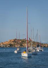 Sailboat Moorings (Alida's Photos) Tags: sea vertical sailing mooring tropical caribbean sailboats bvi britishvirginislands