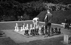 Black vs. White (AndreArma) Tags: park leica holland london film photography 50mm voigtlander chess 15 400 hp5 ilford m6 nokton ilfosol selfprocess