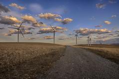 Turbines (Len Langevin) Tags: sunset sky landscape nikon energy tokina dirt alberta turbine windfarm 1116 roadgreen d300s