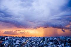 THE SUN - IN THE RAIN - AT SUNSET (Veronica Vu) Tags: sunset landscape photography nikon vietnam saigon nikond7000 demicat