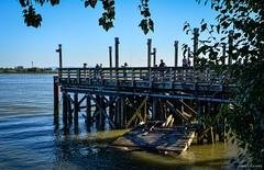 "Richmond ""No. 3 Road Sports Fishing Pier"" (SonjaPetersonPh♡tography) Tags: canada water river pier fishing dock britishcolumbia richmond wharf fraserriver steveston fishingpier dykeroad oldpier no3road nikond5200 no3roadsportfishingpier"