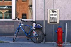 Un vlo, une borne-fontaine et un immeuble  vendre (guysamsonphoto) Tags: bike bicycle hydrant hdr victoriaville victo guysamson sonyalpha7rmkii aurorahdrpro sonyfe50mmf18