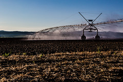 Water Strider (Culinary Fool) Tags: palouse usa washington sprinkler mist 2016 morning crops palousescenicbyway wa brendajpederson machinery irrigation photography fields hills roadtrip culinaryfool may travel travelwa 2470mm28