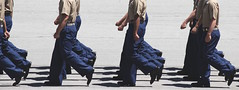 In Formation (lydiakoerner) Tags: usmc mcrd dressblues military walking marching synchronization harmony drill graduation usa