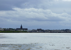 A St Magnus Cathedral Silhouette (orquil) Tags: stmagnus cathedral spire silhouette kirkwall town skyline seaside seascape kirkwallbay calm ripples reflected light floating seabirds clouds cloudscape august afternoon summer orkney islands scotland uk greatbritain orcades maritime
