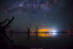 Mirror (Samir Pandya-Adelaide(Captured Moments..)) Tags: winternight galaxy constellation nebula star reflectionwoodwood milkyway mirror reflection wood artperfectreflection blue sky lake australia oranger eflection darknight nikon d810 tamron2470mmf28 southaustralia lakebonney