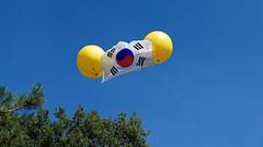 DSC00739_DxO-1800Q96_2 (Franck Zumella) Tags: korean flag paris drapeau coreen korea coree event fly