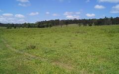 Smiths Creek Road, Smiths Creek NSW
