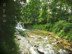(Ryuu) Tags: waterfall river trees green water clif riverbank stones plants flowers bushes leaves landscape turquoise summer