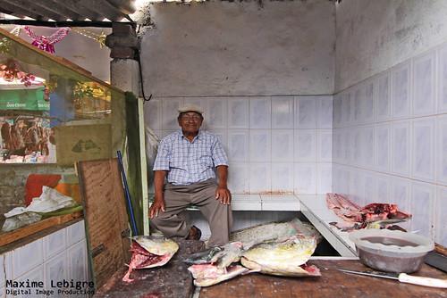 Vendedor de pescado - Peru