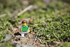 Stan Wild Flowers (Radiant Squares Photography) Tags: outside lego stan minifigure legoman minifigures legoproject radiantsquares stanthelegoman 2015legoproject