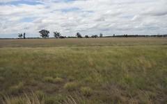 THE POCKET, Gilgandra NSW