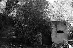 Rudere (Stefano Piazza) Tags: canon gallo sicily piazza palermo bianco capo nero sicilia stefano rudere riserva barcarello 1200d