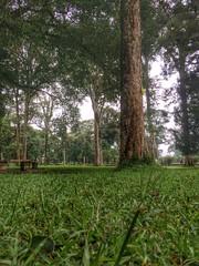 #park (wisnuho) Tags: candikuning