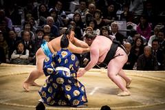 Sumo in Osaka-20 (Rodrigo Ramirez Photography) Tags: japan amazing traditional professional tournament osaka sumo yokozuna ozeki makuuchi hakuho sumotori sumotournament maegashira reikishi harumafuji topdivision
