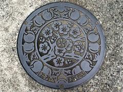 Tanabe Wakayama, manhole cover 2  (MRSY) Tags: plant flower tree japan  manhole   plam  wakayama fruite  tanabe