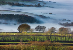Milton Combe mistscape (snowyturner) Tags: morning mist layers tor dartmoor valleys brentor tavy miltoncombe