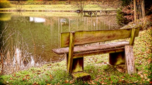Die Bank am Weiher der Stille/The bench at the pond of silence
