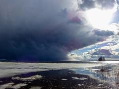 Pyhselk - Finland (s.niemelainen) Tags: cloud lake ice nature suomi finland landscape spring north maisema joensuu luonto jrvi j pilvi karjala kevt pyhselk kuhasalo carelia pohjois