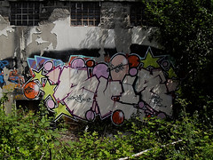 ([gegendasgrau]) Tags: city summer urban plants green art nature colors wall graffiti mural colorful purple sommer natur pflanzen citylife style atmosphere sunny vandalism environment grn scrap sonne 2009 dortmund mauer violett 143 ambiance umwelt ugk skie lostplace abonded atmo abwrack