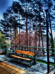 Maanas de lluvia (Jotha Garcia) Tags: color colour primavera rain march spring lluvia farola streetlight seat banco marzo hdr cercedilla 2016 huawei jothagarcia