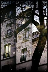 Souvenirs d'hiver (Calinore) Tags: city winter reflection rain architecture puddle hiver pluie reflet villefrance flaque 12eme parsi xiieme