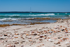 Formentera Cal Des Mort - Shell and sand (Darkduke986) Tags: sea sun landscape nikon mare shell shore sole paysage formentera d3000