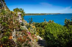 The Rock Garden (C.G.Photos) Tags: england coast landscapes holidays cornwall marazion