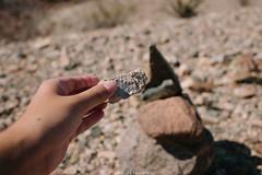 5R6K2612 (ATeshima) Tags: arizona nature havasu