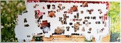Katzen-Panorama (Leonisha) Tags: puzzle unfinished jigsawpuzzle