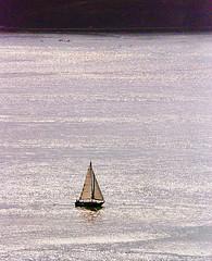 DSC_6597 - Copy (digifotovet) Tags: sanfrancisco california bay boat sail