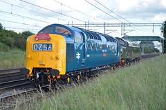 05-07-16 BR Blue D9009 & D213 - 0Z56 Grosmont - Crewe Gresty Bridge (Lukas66538) Tags: bridge blue green br rail class crewe 55 chorlton services direct grosmont drs 40013 alycidon gresty d213 d9009 55009 andania 0z56
