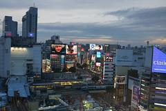 DSC01615 (Zengame) Tags: japan zeiss tokyo sony shibuya cc creativecommons    rx  rx1  hikarie  rx1r rx1rm2 rx1rmark2
