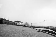 119.2016 (Francisco (PortoPortugal)) Tags: 1192016 20151221fpbo1839 p bw paisagem landscape rural cabanas valpaos vilareal portugal portografiaassociaofotogrficadoporto franciscooliveira