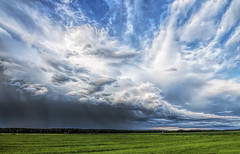 A Thunderstorm was passing by... (Jyrki Liikanen) Tags: thunder storm stormylandscape thundercloud rurallandscape countryside greenfields cloudysky skycapture skypainters skylovers nikonphotography d500 cloud sky outdoor landscape field grass plant