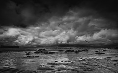 The Beach (Richard Walker Photography) Tags: ocean uk sea sky blackandwhite seagulls seascape storm beach clouds landscape coast seaside sand rocks cornwall harbour stormy coastal stives landscapephotography